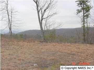 4625 Citadel Rock Road, Fort Payne, AL 35967 (MLS #822169) :: MarMac Real Estate