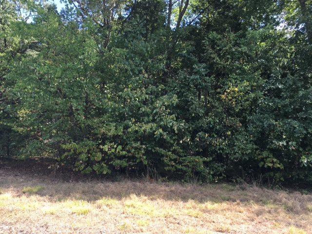 Lot 14 Cedar Trace Drive, Hartselle, AL 35640 (MLS #1036200) :: Amanda Howard Sotheby's International Realty
