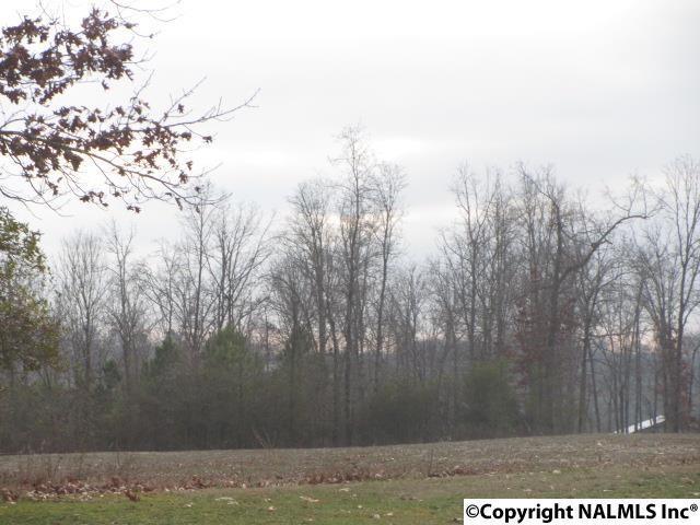 000 Chavies Road, Rainsville, AL 35986 (MLS #1060118) :: Legend Realty