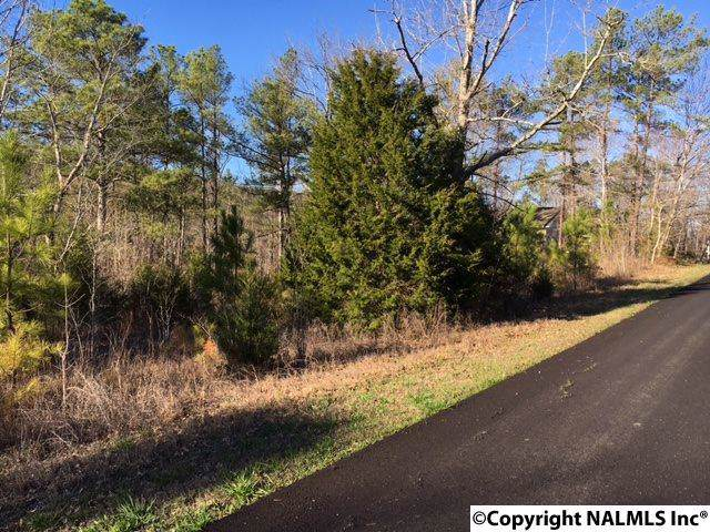 Doughboy Road, Rainbow City, AL 35906 (MLS #1064326) :: MarMac Real Estate