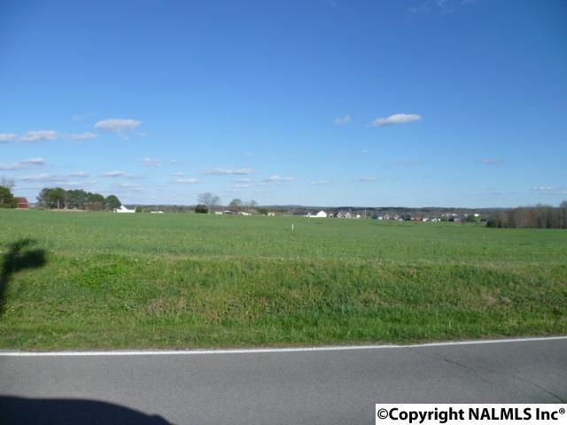 Lot 14 Parker Avenue, Rainsville, AL 35986 (MLS #1066082) :: Amanda Howard Sotheby's International Realty