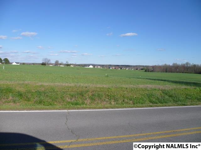 Lot 19 Parker Avenue, Rainsville, AL 35986 (MLS #1066090) :: Amanda Howard Sotheby's International Realty