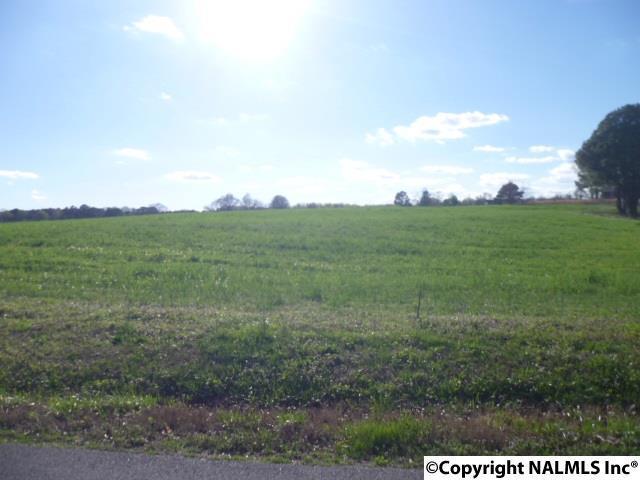 lot 22 Maple Avenue, Rainsville, AL 35986 (MLS #1066093) :: Amanda Howard Sotheby's International Realty