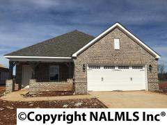 102 Kinglet Way, Madison, AL 35756 (MLS #1077904) :: Intero Real Estate Services Huntsville