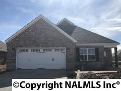 105 Kinglet Way, Madison, AL 35756 (MLS #1077934) :: Intero Real Estate Services Huntsville