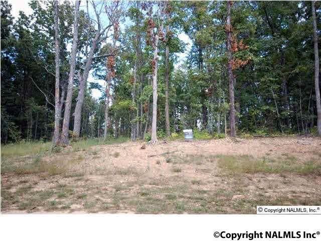 5 Winter Walk Way, Huntsville, AL 35803 (MLS #1079407) :: MarMac Real Estate