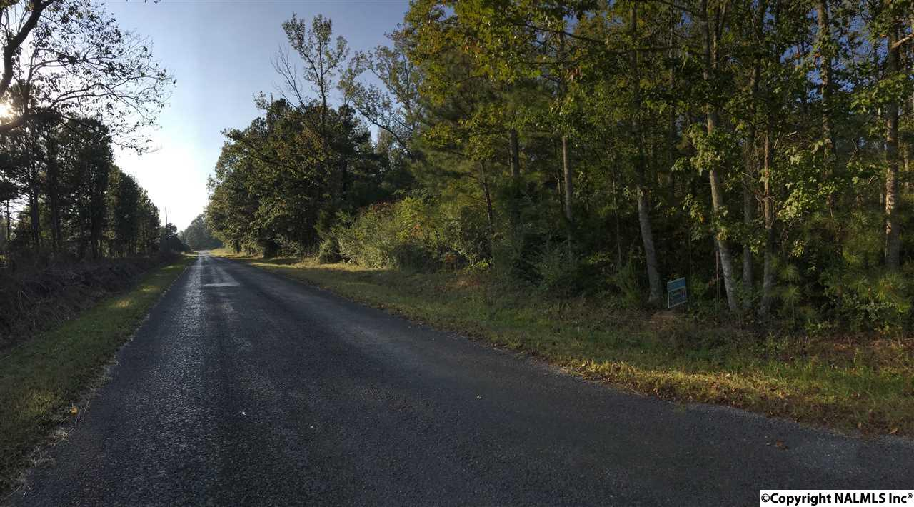 0 Mt Carmel Road - Photo 1