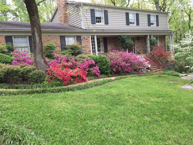 710 Corlett Drive, Huntsville, AL 35802 (MLS #1082485) :: Capstone Realty