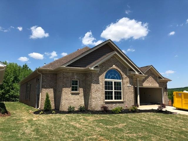 125 Summer Walk Lane, Harvest, AL 35749 (MLS #1086043) :: Capstone Realty