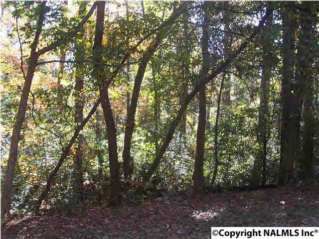 1.19 AC Foxfire Drive, Arab, AL 35016 (MLS #1090297) :: Rebecca Lowrey Group