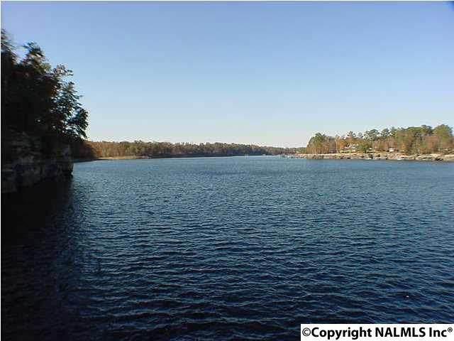 County Road 3930, Arley, AL 35541 (MLS #1095191) :: MarMac Real Estate