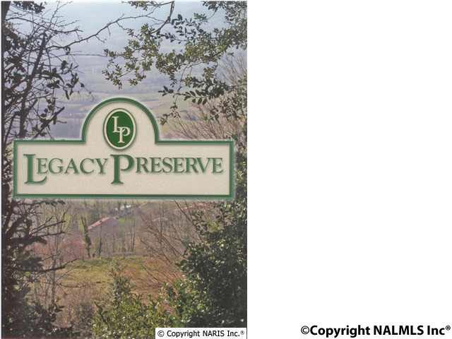 4611 Legacy Preserve Way - Photo 1