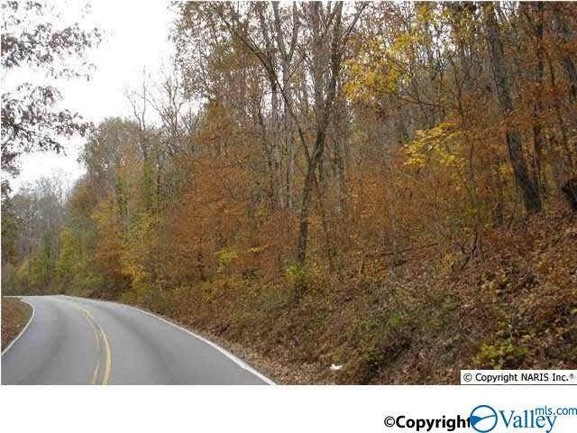 0 Keel Mountain Road - Photo 1