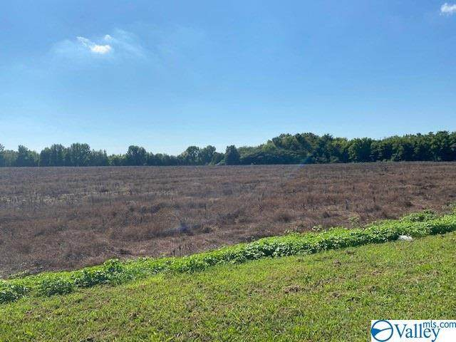 000 County Line Road, Madison, AL 35756 (MLS #1146727) :: Southern Shade Realty