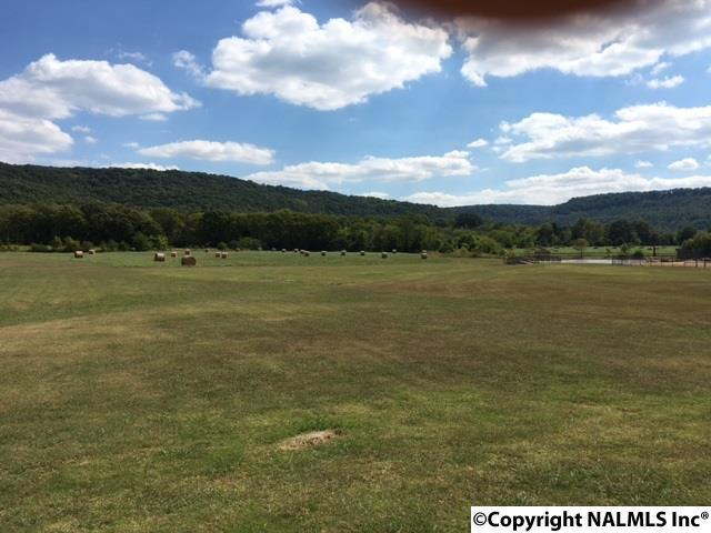 Lot 19 Cedar Trace Drive, Hartselle, AL 35640 (MLS #1036201) :: Amanda Howard Sotheby's International Realty
