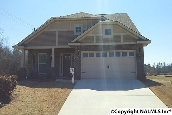300 Harold Murphy Drive, Madison, AL 35756 (MLS #1068645) :: Capstone Realty