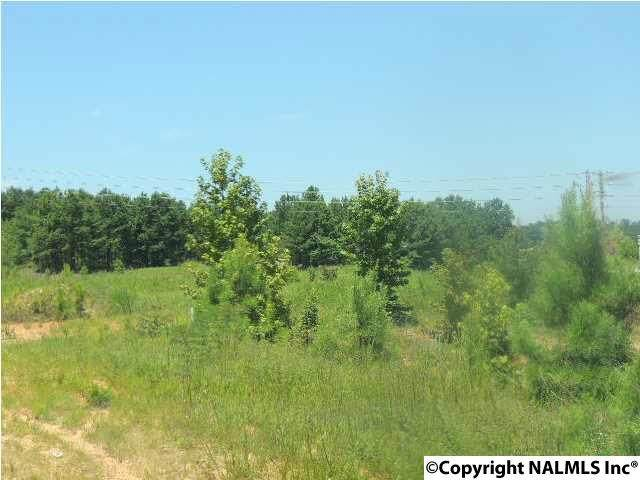 0001 Old Highway 411 - Photo 1