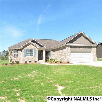 1610 Sturkietown Road, Southside, AL 35907 (MLS #1090715) :: RE/MAX Alliance