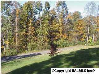 1 Creek Circle, Guntersville, AL 35976 (MLS #402220) :: RE/MAX Distinctive | Lowrey Team