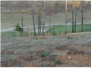 3 River Ridge Drive, Guntersville, AL 35976 (MLS #529152) :: RE/MAX Unlimited