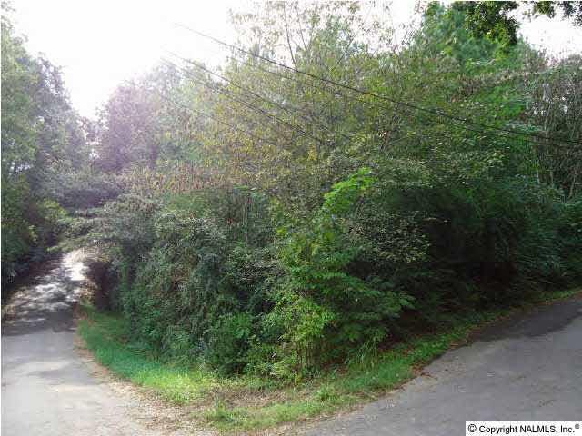 Parker Street, Guntersville, AL 35976 (MLS #656864) :: MarMac Real Estate