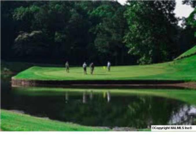 21 Moss Hill Circle - Photo 1