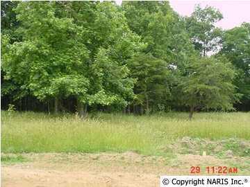 County Road 1009 Lot 3, Fort Payne, AL 35968 (MLS #686404) :: Amanda Howard Sotheby's International Realty