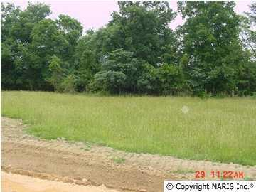 County Road 1009 Lot 2, Fort Payne, AL 35968 (MLS #819380) :: Legend Realty