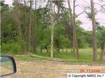 County Road 1009 Lot 10, Fort Payne, AL 35968 (MLS #824387) :: RE/MAX Alliance