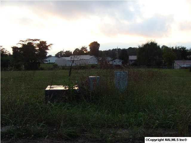 190 Peace Drive, Albertville, AL 35950 (MLS #882290) :: Amanda Howard Sotheby's International Realty