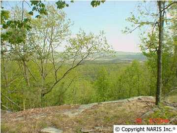 County Road 1010 Lot 23, Fort Payne, AL 35968 (MLS #999069) :: Legend Realty