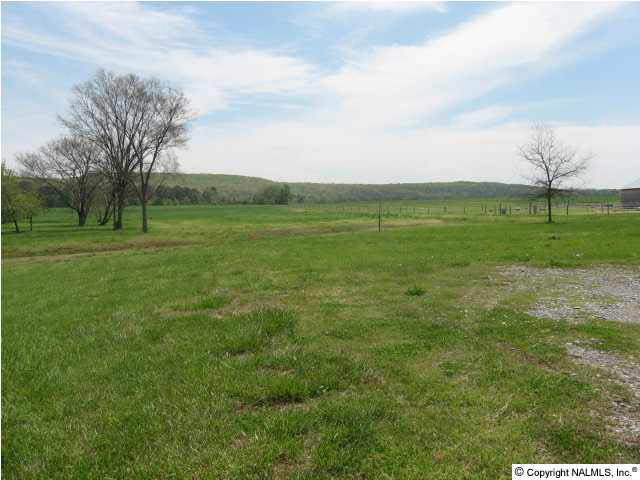 8256 Old Railroad Bed Road - Photo 1