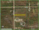 000 Everglades Blvd - Photo 3