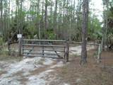 180 ACRES Newman Dr Dr - Photo 1