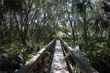 27113 Serrano Way - Photo 5