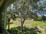 3465 Grand Cypress Dr - Photo 15