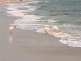 4835 Bonita Beach Rd - Photo 16
