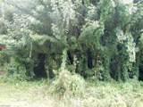 6031 Spanish Oaks Ln - Photo 2