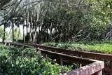 27117 Serrano Way - Photo 5