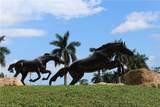 9114 Chula Vista Ln - Photo 2