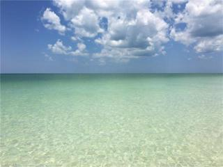 12055 Keewaydin Island, Naples, FL 34113 (MLS #216013975) :: The New Home Spot, Inc.