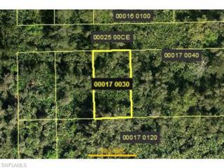 4241 Santiago St, Estero, FL 33928 (MLS #215053998) :: The New Home Spot, Inc.