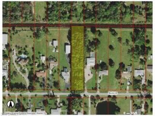 5299 Myrtle Ln, Naples, FL 34113 (MLS #216024635) :: The New Home Spot, Inc.