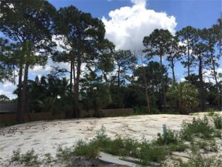 12019 River View Dr, Bonita Springs, FL 34135 (MLS #216029017) :: The New Home Spot, Inc.