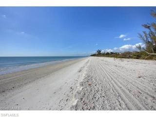 11695 Keewaydin, Naples, FL 34101 (MLS #216034097) :: The New Home Spot, Inc.