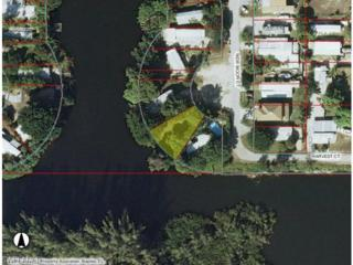 4078 New Moon Ct SW, Naples, FL 34112 (MLS #216035502) :: The New Home Spot, Inc.
