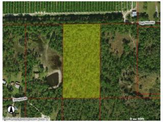 Honebee Dr, Naples, FL 34120 (MLS #216049636) :: The New Home Spot, Inc.