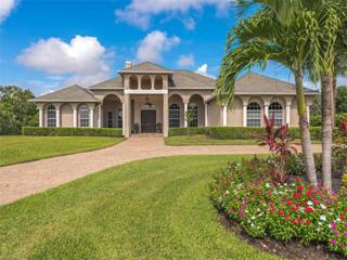 10111 Winterview Dr, Naples, FL 34109 (MLS #216054371) :: The New Home Spot, Inc.