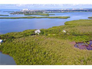 828 Whiskey Creek Dr, Marco Island, FL 34145 (MLS #216060871) :: The New Home Spot, Inc.