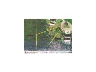 7995 Gabion Ct, Bokeelia, FL 33922 (MLS #216062695) :: The New Home Spot, Inc.